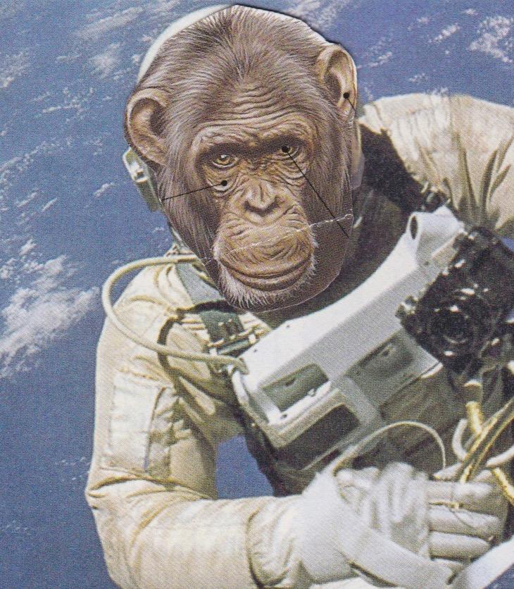 singe astronaute