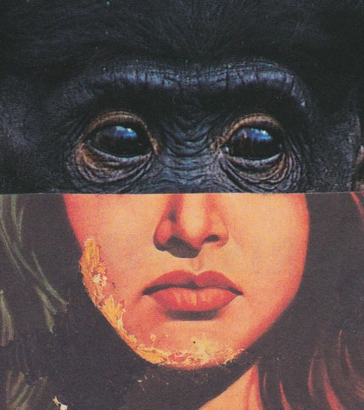 hybride singe humain