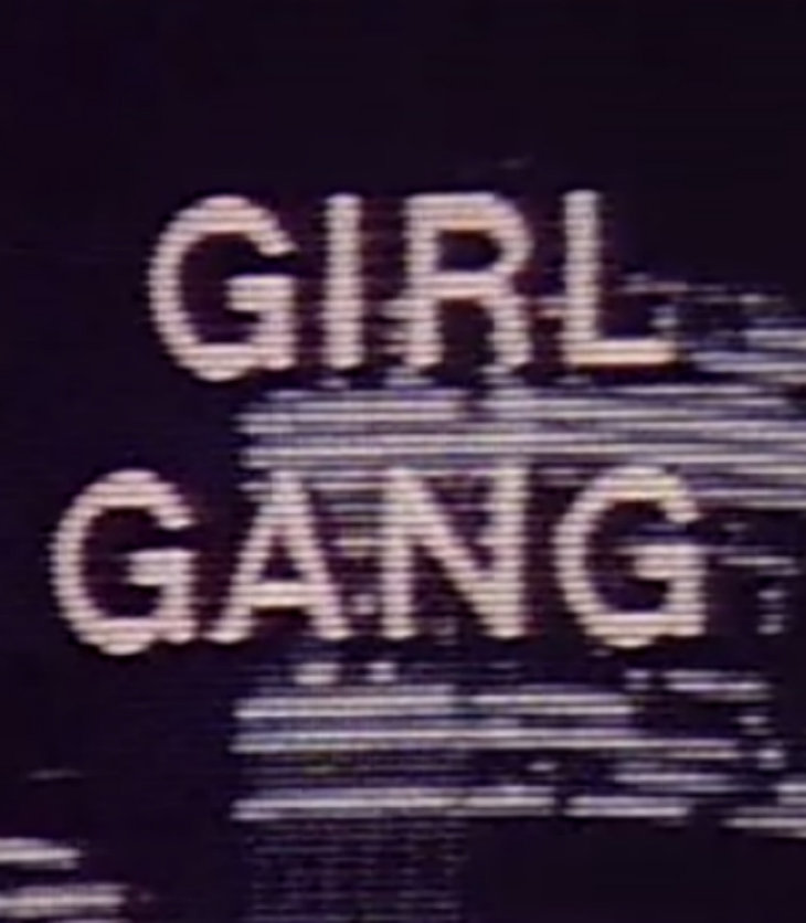 Born in flames girl gang